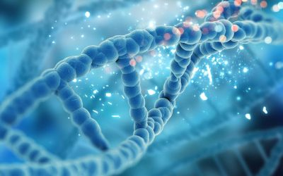 Microbioma o Microbiota? Che cosa sono e quali sono le differenze?